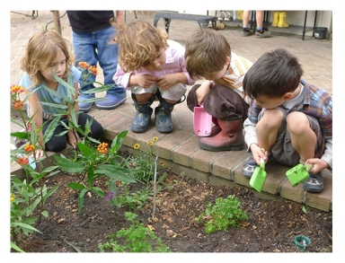 12-Easiest-Plants-for-Kids-to-Grow-11