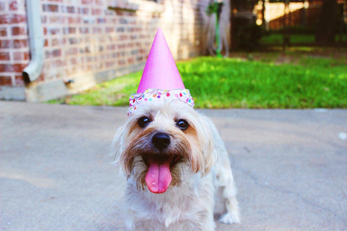 7 Ideas DIY para cumpleaños, recuperando las ideas de antaño